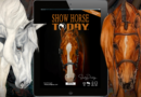 Show Horse Today Salute to Small Business