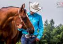 The Canadian Quarter Horse Association Launches Horse of Merit Program