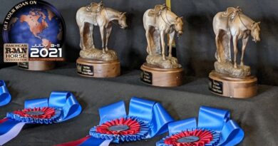 2021 ARHA World Show Results and Candids