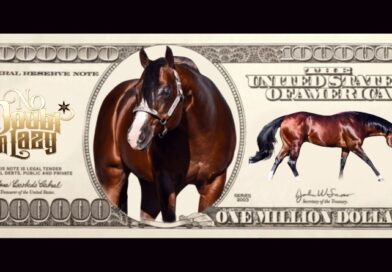 No Doubt Im Lazy Becomes A Million Dollar Sire