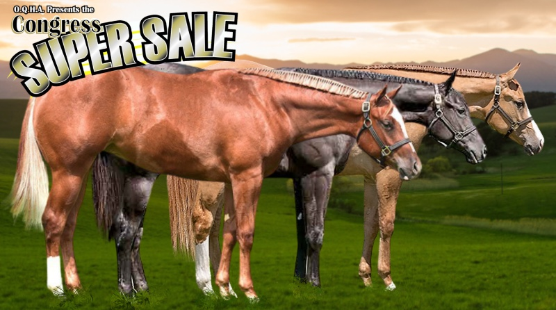 2021 Congress Yearling Preview