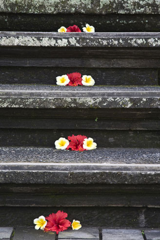 Bali Steps