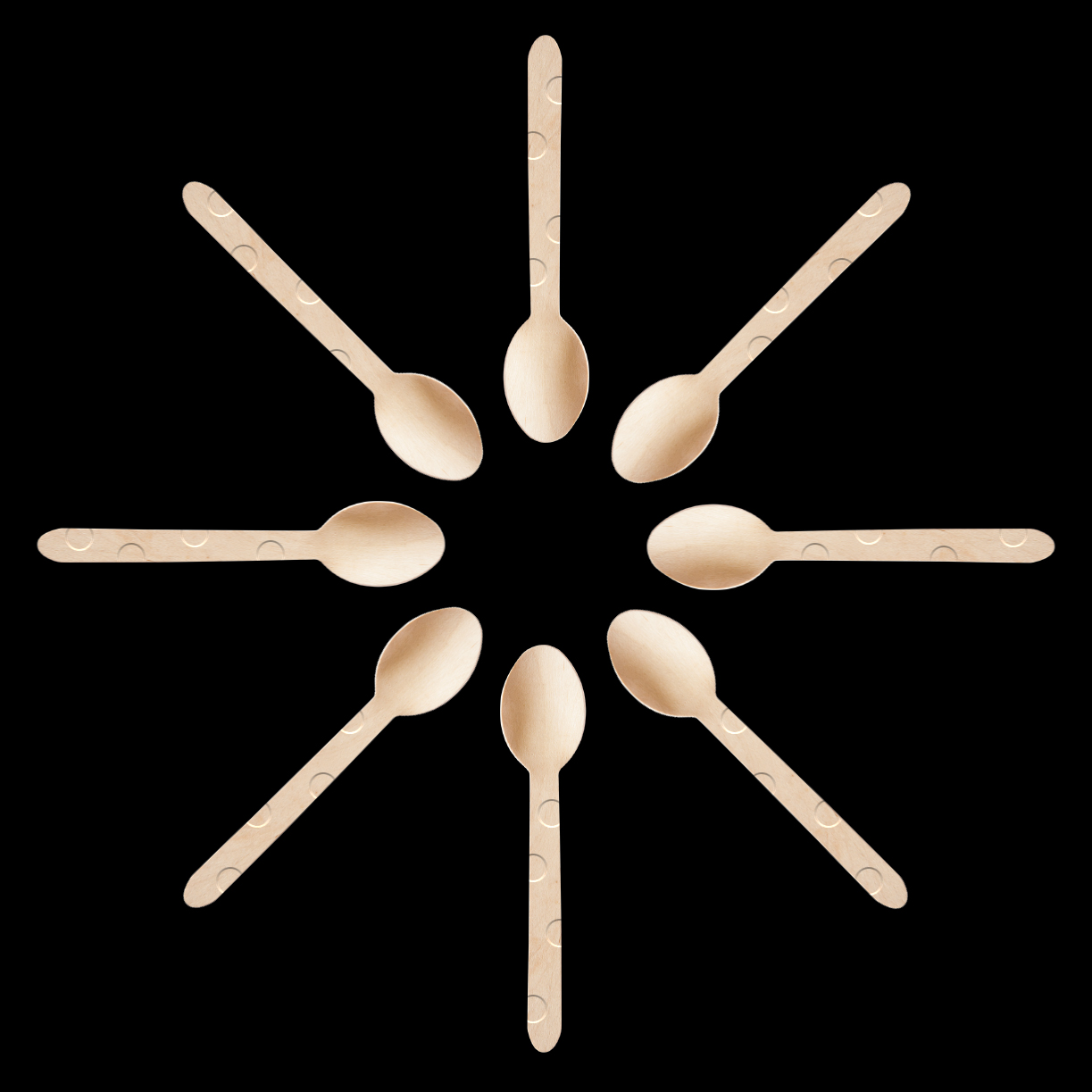 RBS_Four_Seasons_Orlando_Wooden_Spoons