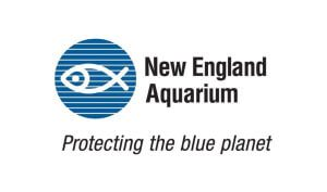 New-England-Aquarium