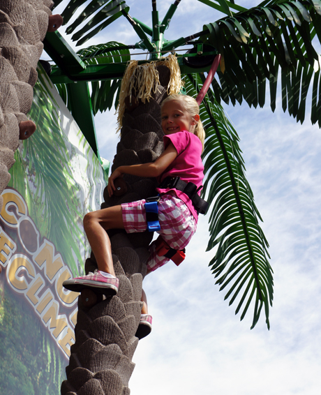 Coconut Tree Climb Girl