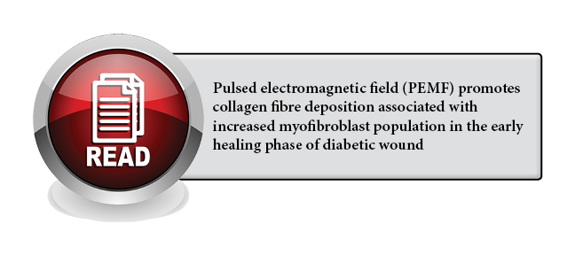 136 - Pulsed electromagnetic field (PEMF) promotes collagen fibre deposition associated with increased myofibroblast population in the early healing phase of diabetic wound