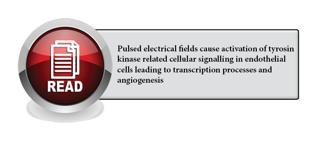 138 - Pulsed electrical fields cause activation of tyrosin kinase related cellular signalling in endothelial cells leading to transcription processes and angiogenesis