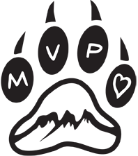 MVP – Animal Therapy Centre