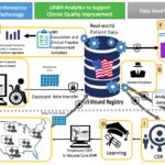 Wound Care Network Based Learning Health System Serena et al