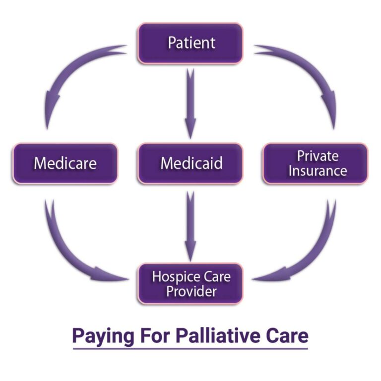 How Does Palliative Care System Work