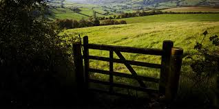 How You Can Lose (or Gain) Land by Adverse Possession