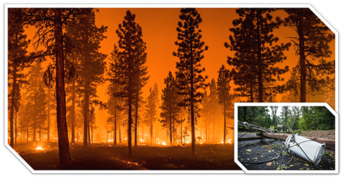 wildfire and hurricane image