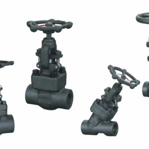 Foreged Steel Globe Valve