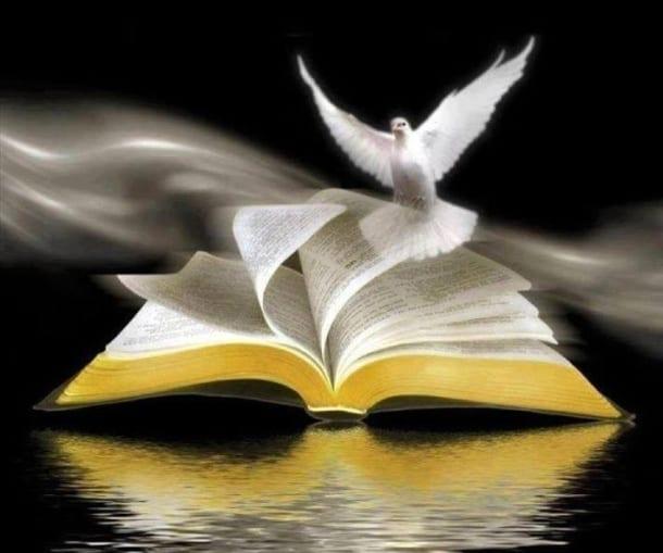 Kết quả hình ảnh cho học với chúa thánh thần