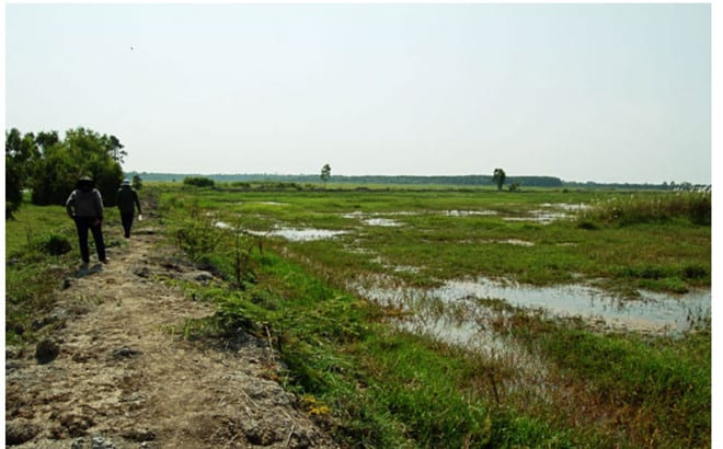 Khu bảo tồn đất ngập nước Láng Sen /// Ảnh: chụp màn hình Gody.vn