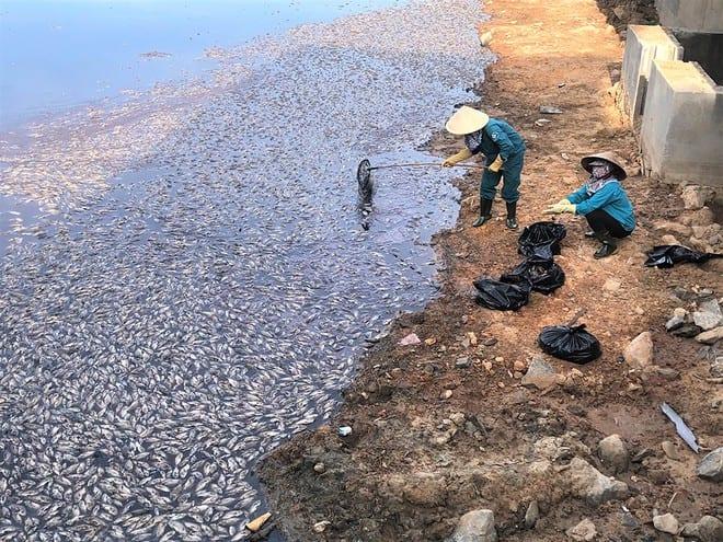 Nắng nóng khiến nước hồ Trạm (TP.Đồng Hới, Quảng Bình) xuống thấp, cá chết hàng loạt /// ẢNH: TRƯƠNG QUANG NAM