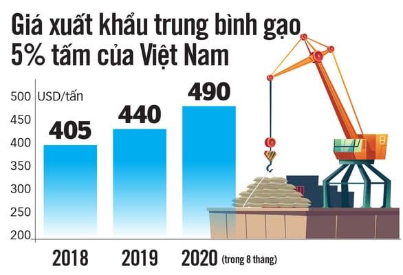 Gạo Việt đừng mải mê sản lượng - Ảnh 4.