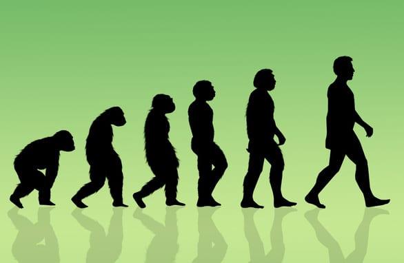 Phát hiện mới: Con người đang tiến hóa nhanh nhất 250 năm qua - Ảnh 3.
