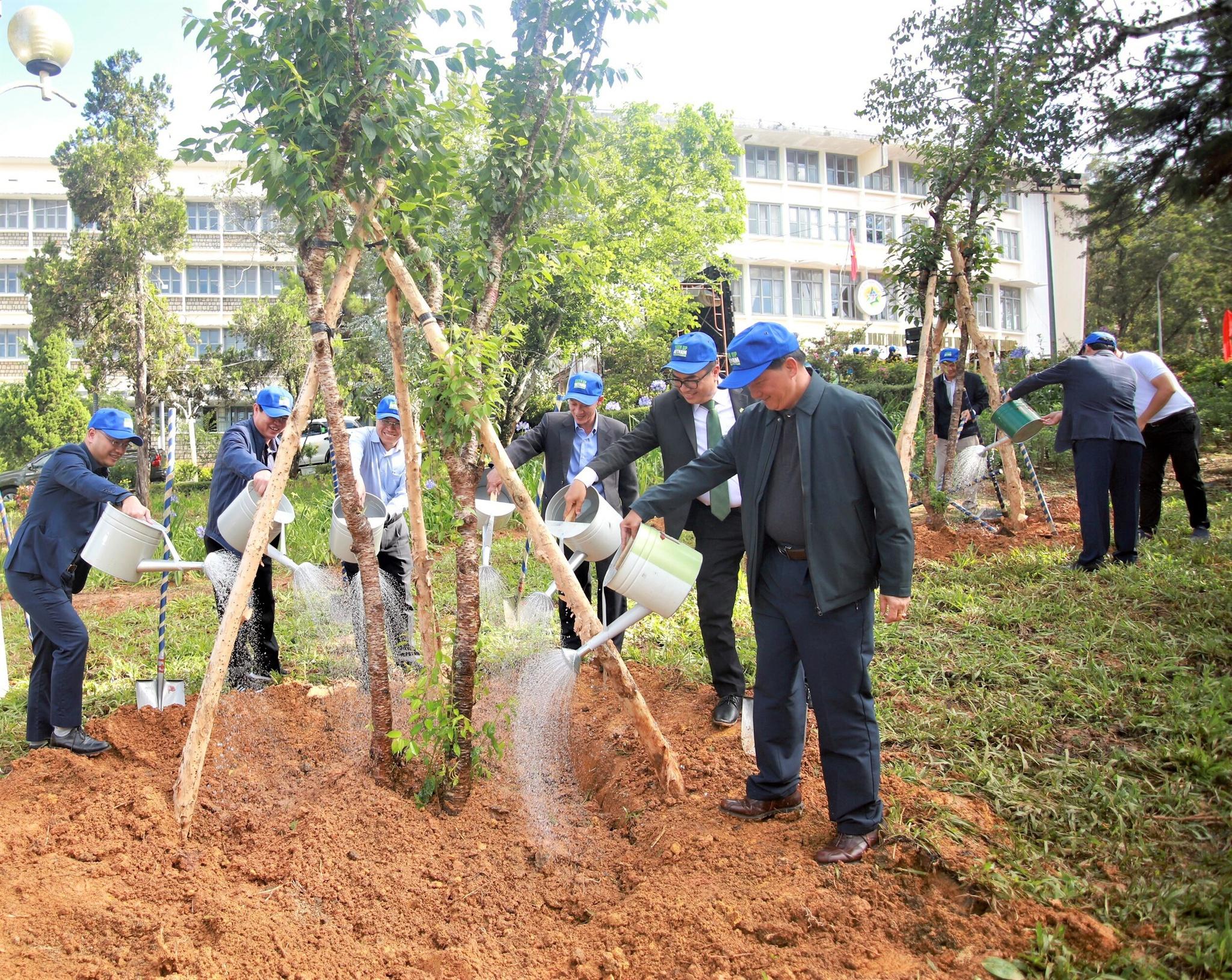 Doanh nghiệp chung tay trồng rừng - ảnh 1