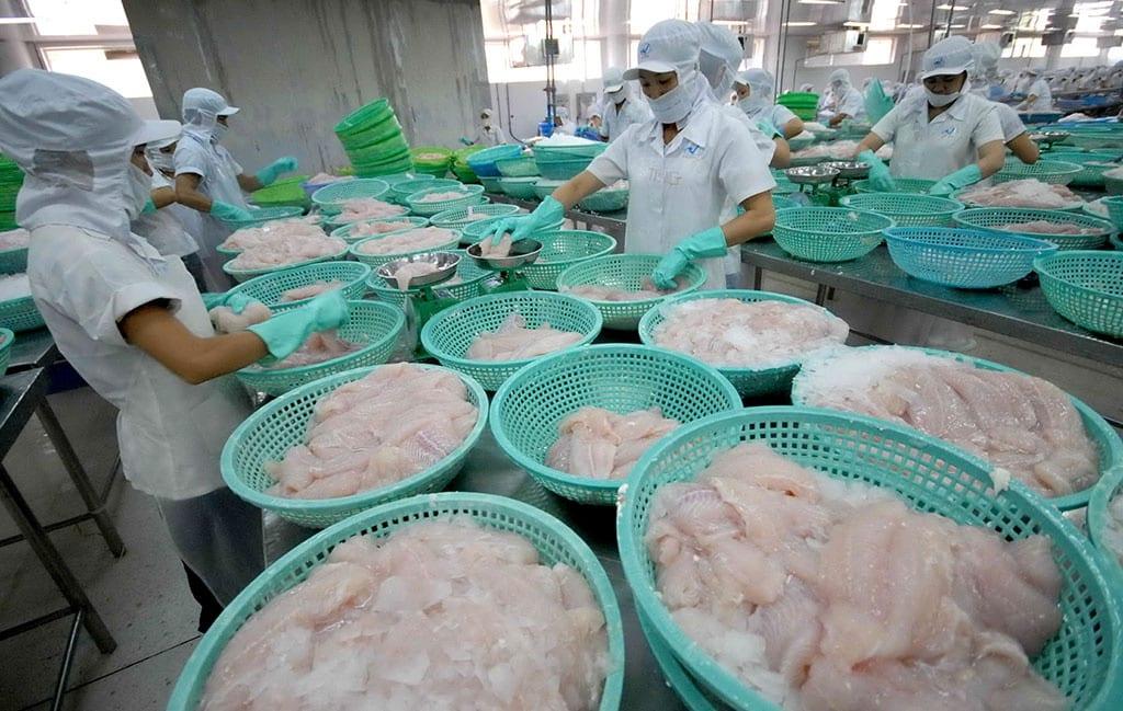 Ngày càng có nhiều mặt hàng xuất khẩu bị kiện điều tra phòng vệ thương mại /// ẢNH: CÔNG HÂN