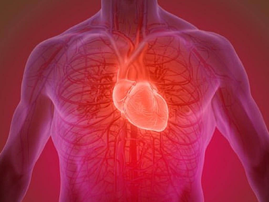 Tập HIIT khoảng 15 phút/ngày có thể giúp tăng cường hiệu quả sức khỏe tim mạch /// Ảnh: Shutterstock
