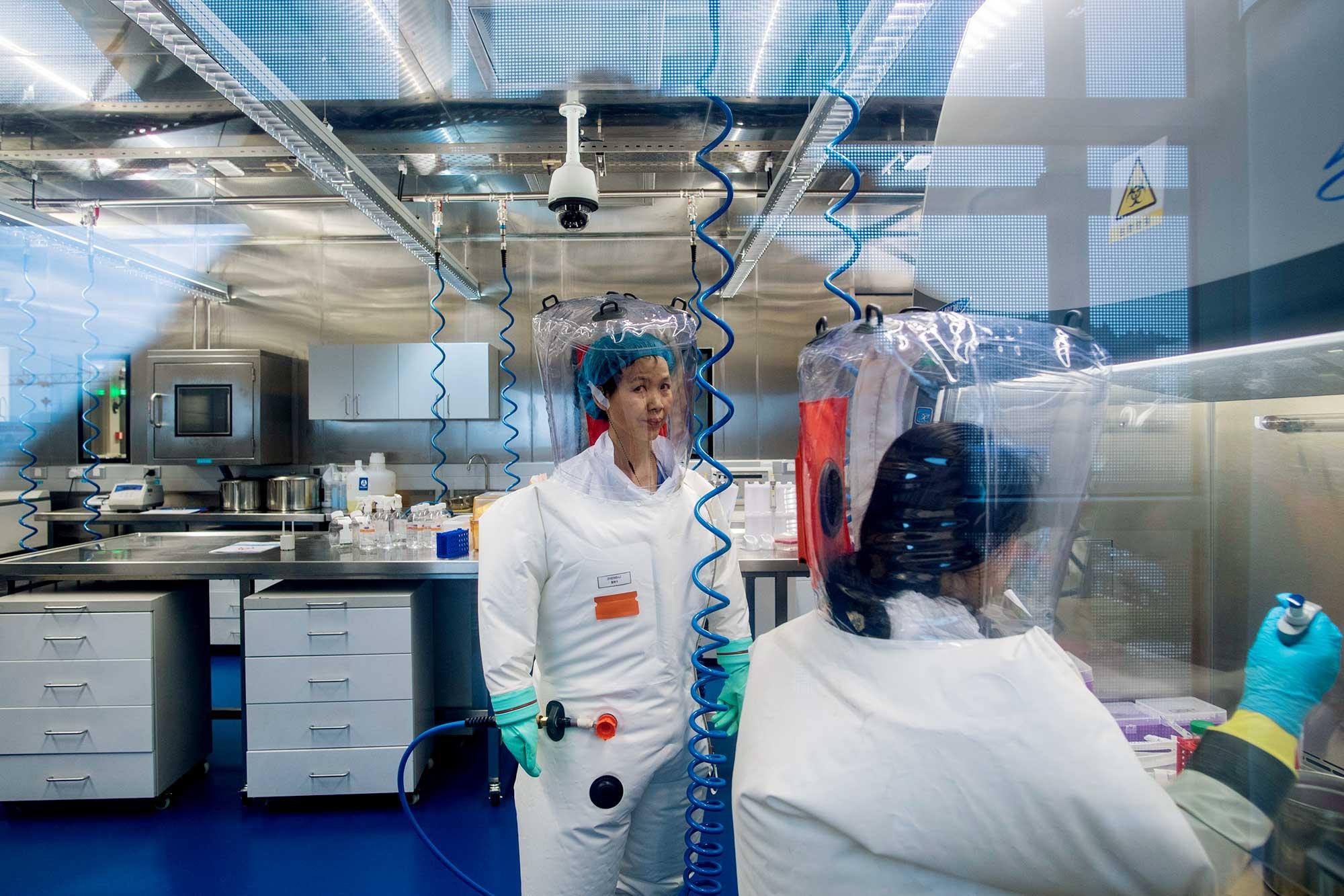 Chuyên gia Pháp bác khả năng virus thoát ra từ Viện Virus học Vũ Hán - ảnh 1