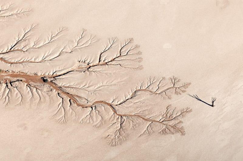 Thiên nhiên hùng vĩ, mơ màng và quyến rũ qua giải ảnh Nature TTL năm 2021 - Ảnh 5.