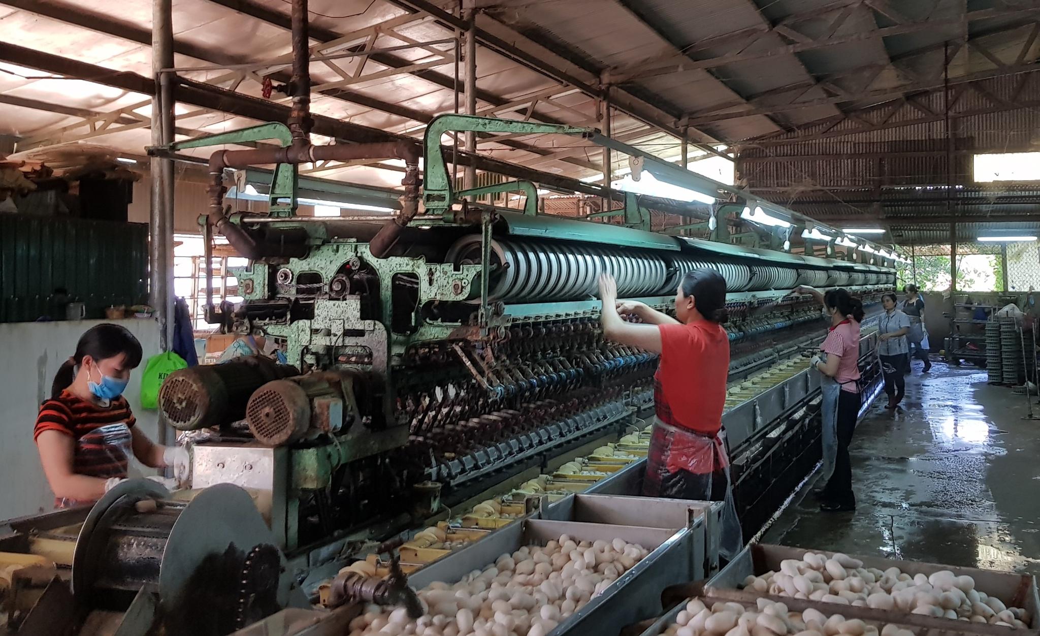 """Doanh nghiệp đóng cửa, công nhân ngành tơ tằm mất việc vì """"3 tại chỗ"""" - ảnh 2"""