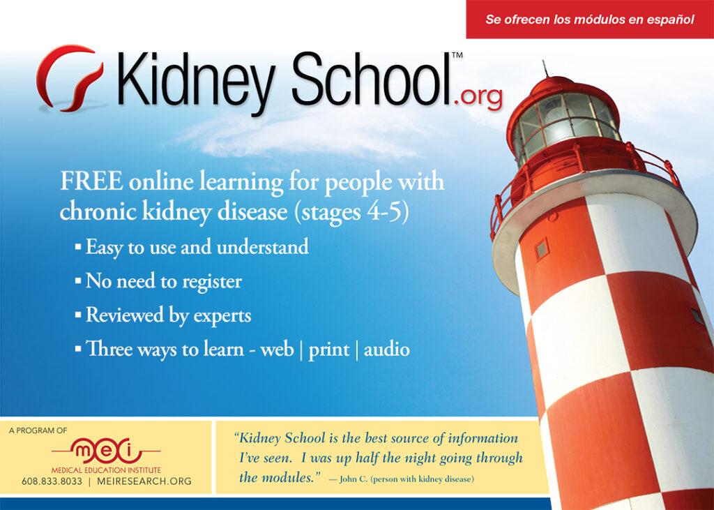 Kidney School
