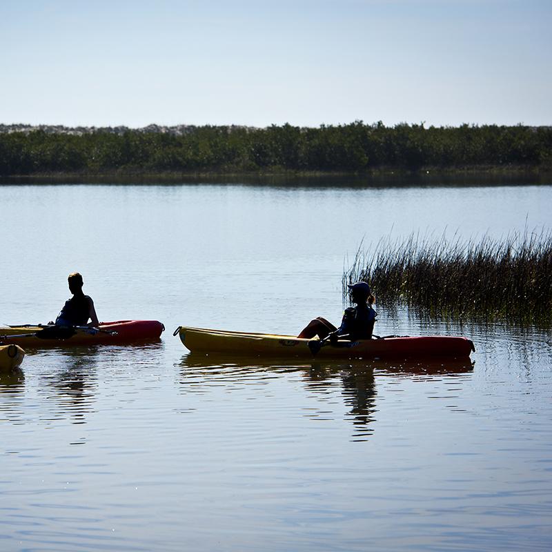 Guided Kayack Tours at Anastasia State Park Beach