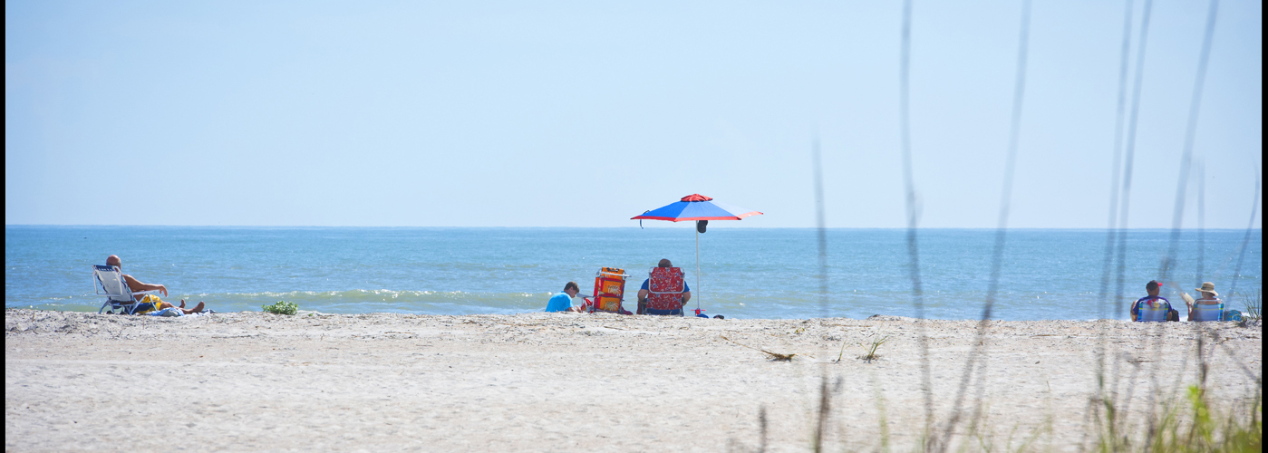 Anastasia State Park Beach Activities 5