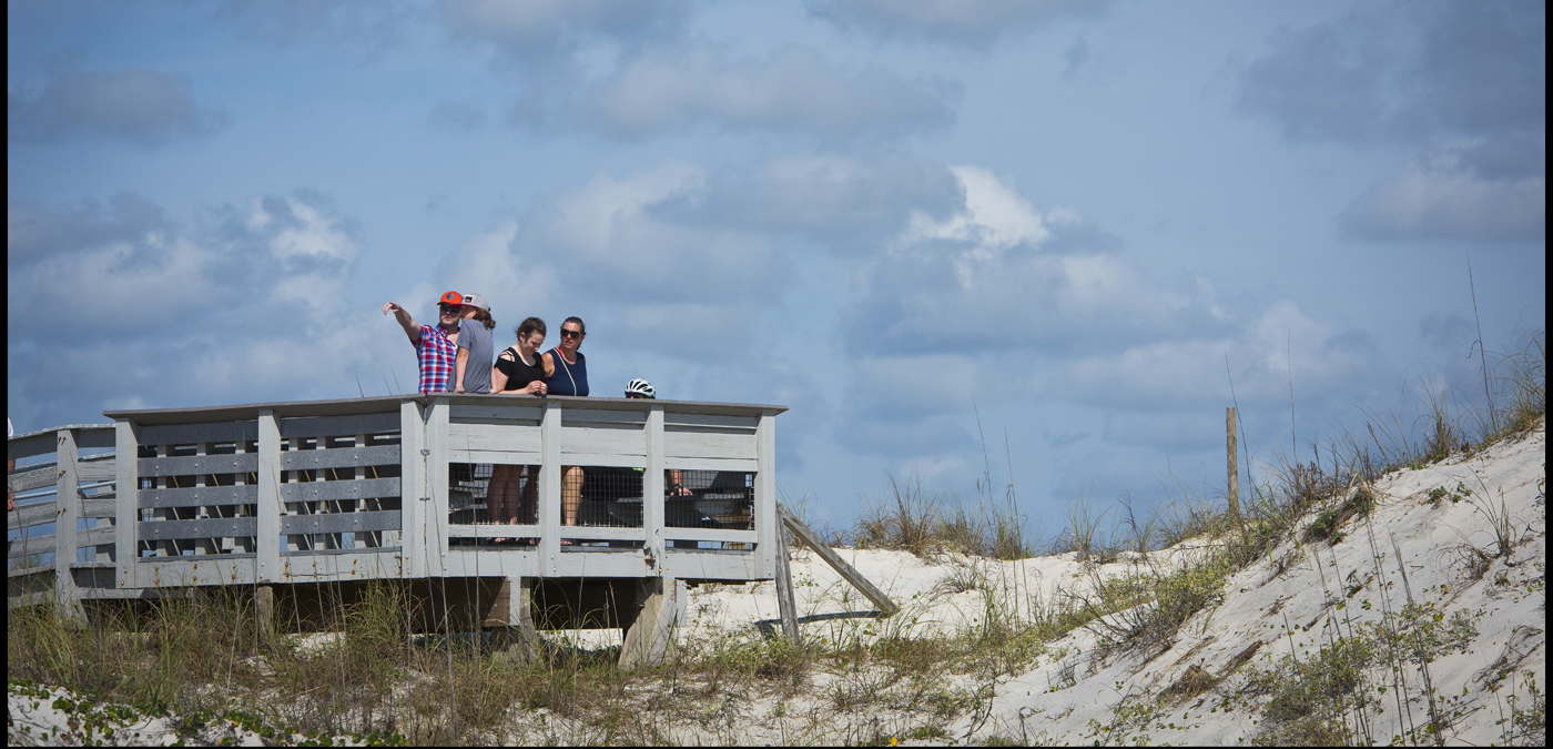 Plan your day at Anastasia State Park