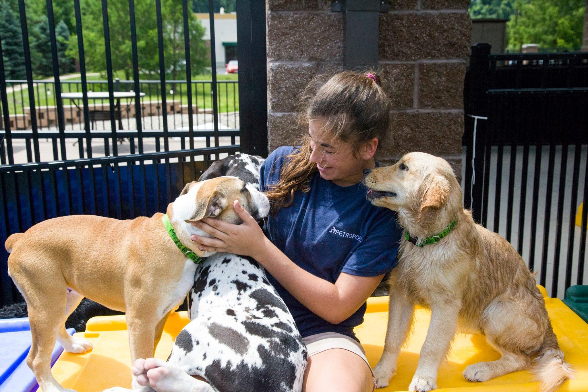 Dog Boarding Pet Empowerment Petropolis Pet Resort