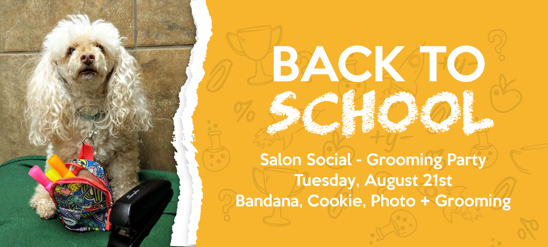 Dog Grooming Party, Back to School