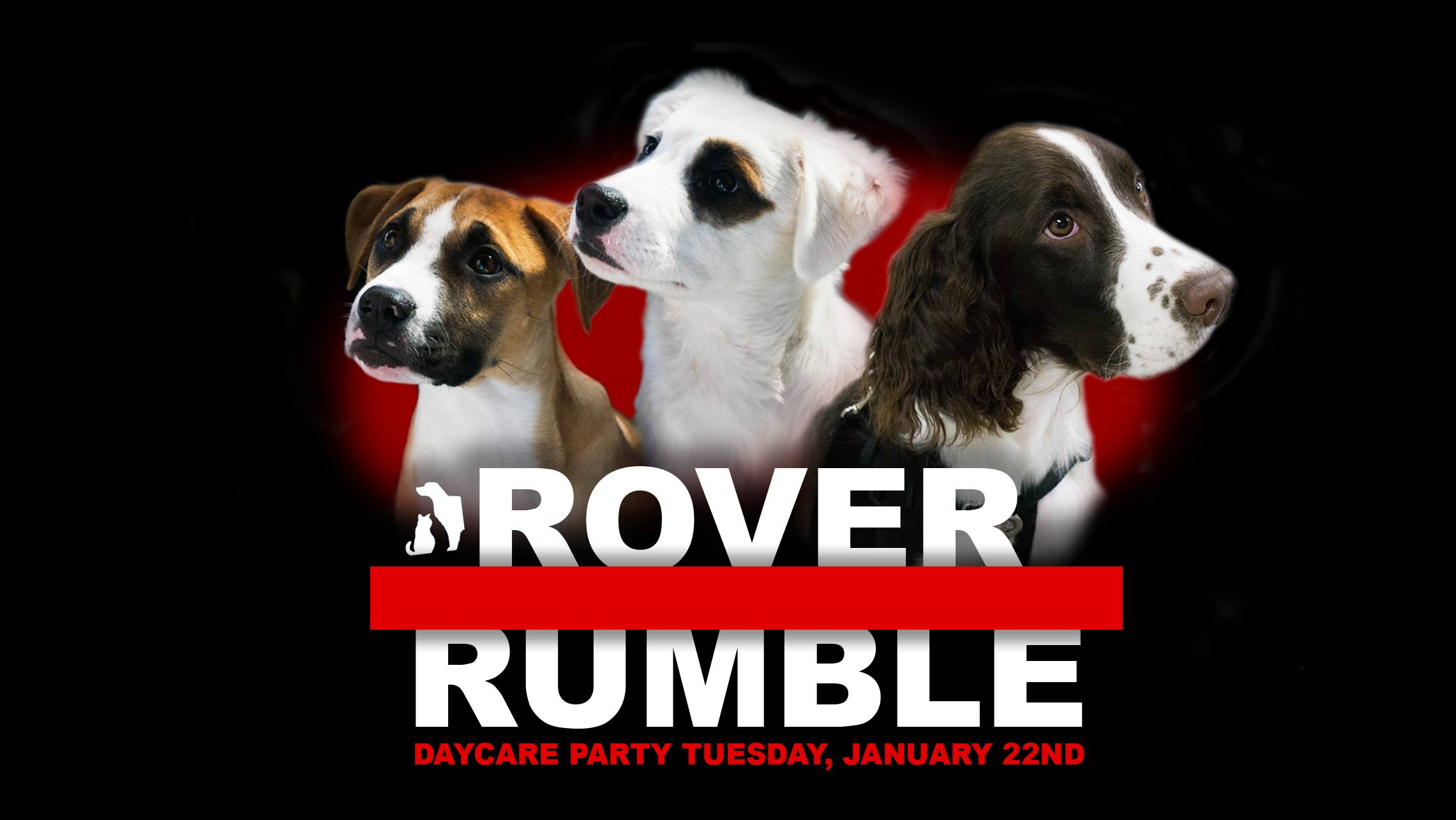 Rover Rumble Doggy Day Care Party