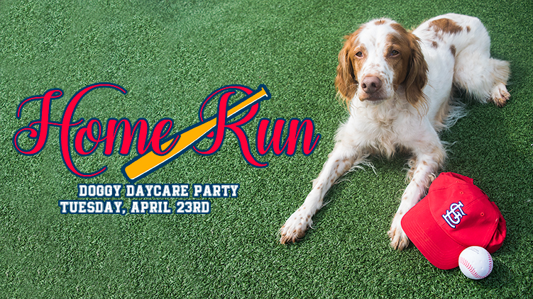 Home Run Doggy Day Care Party