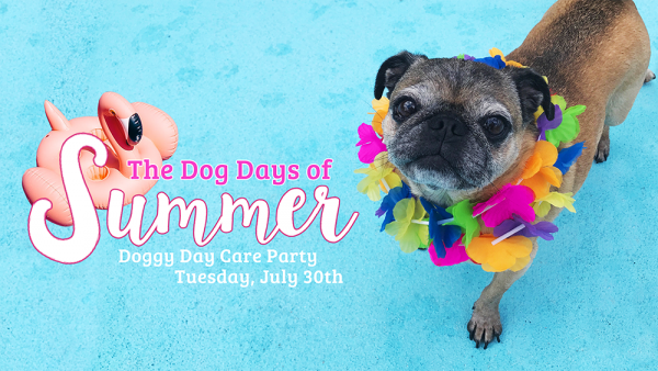 Dog Days of Summer Doggy Day Care Party