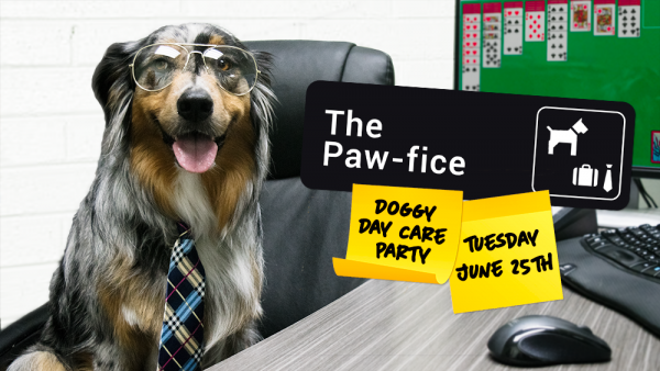"""""""The Paw-fice"""" Doggy Day Care Party"""