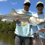 Big snook on fly