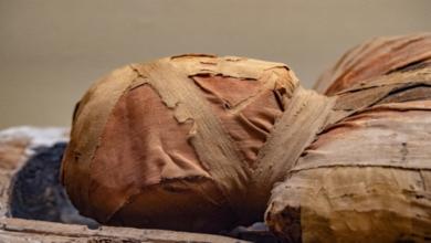 اكتشاف مفاجئ ومدهش داخل نعش مومياء مصرية عمرها 3 آلاف عام