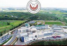 جامعة فينيسيا
