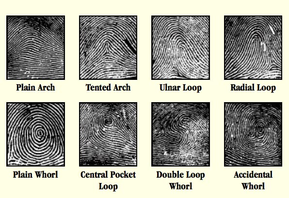 Make Fingerprint Powder at Home and Dust for Prints