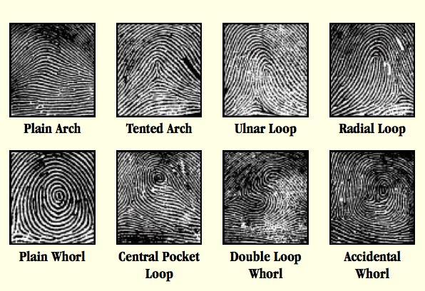 Make Fingerprint Powder at Home and Dust for Prints