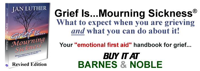 Grief Is Mourning Sickness-Barnes-Noble1