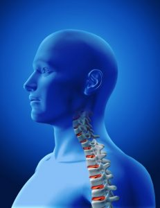Chiropractic Its Relevance and the Treatments Involved