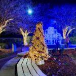Our Top 5 Christmas Light Destinations