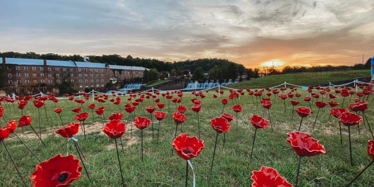 Alabama Poppy Project