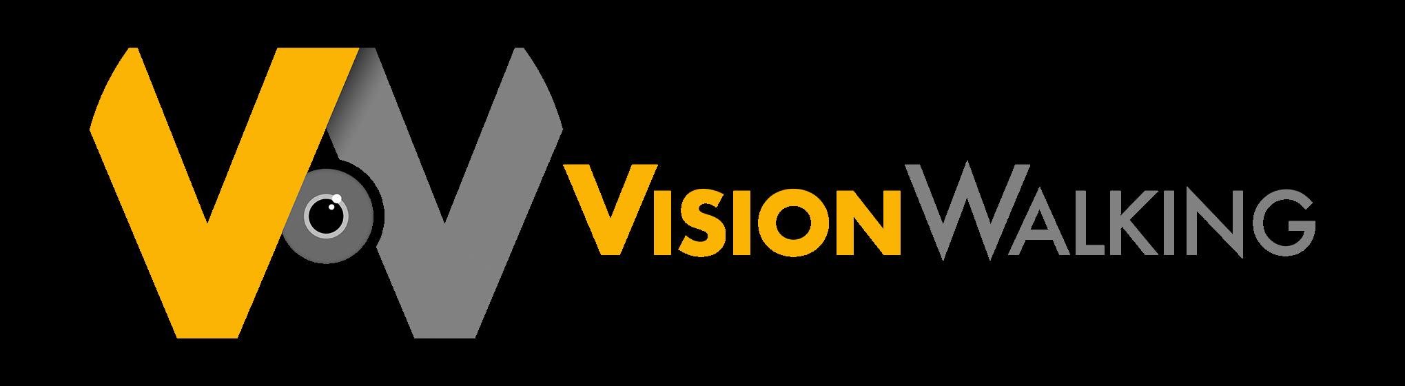 Vision Walking