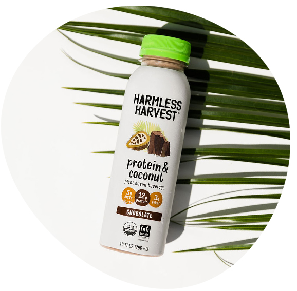 Top down of Harmless Harvest Protein & Coconut 10oz bottle, chocolate flavor against a palm front & white background