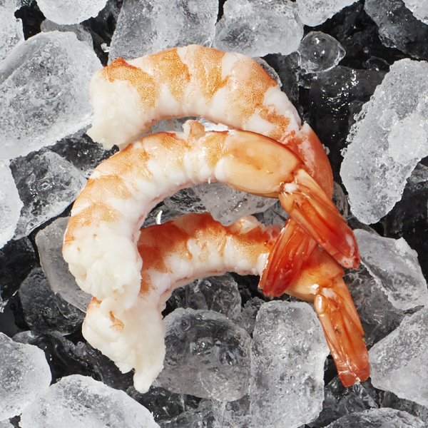 Three cooked fresh Naked Shrimp with tails on sitting on a bed of ice.